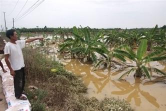 5 khu vực Hà Nội và các vùng lân cận có nguy cơ úng cao trong ngập lụt