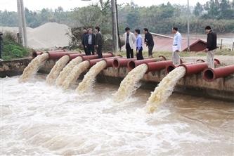 Hà Nội: Hàng loạt vi phạm công trình thủy lợi bị xử lý